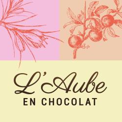 Ballotin de chocolats noir et chocolats au lait l'Aube en chocolat